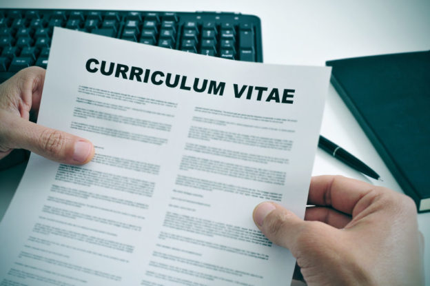 Curriculum Vitae mit Pfiff